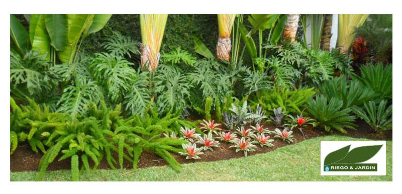 Riego y Jardín