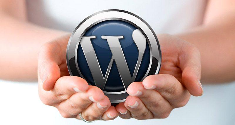 Utilizamos el CMS WORD PRESS para el desarrollo de páginas web