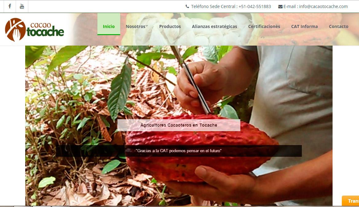 Sitio Web Cacao Tocache