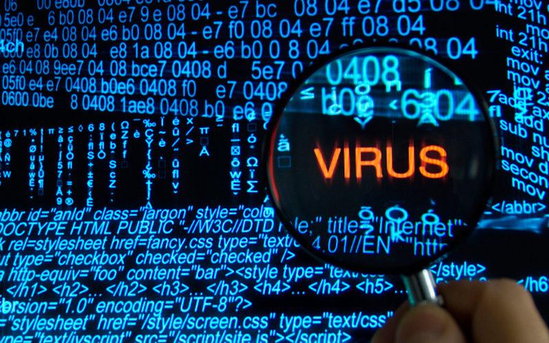 ¿Qué hacer con los virus de computadora?