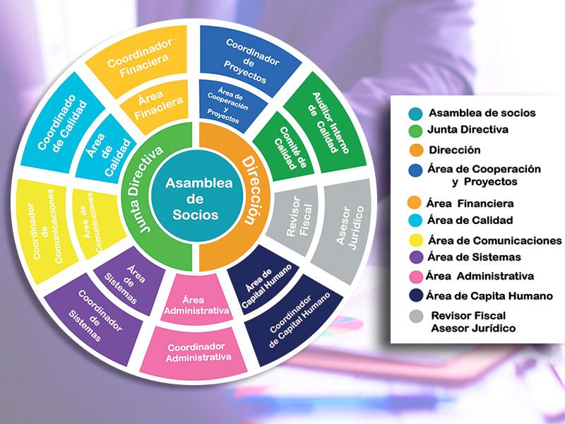 Nuevos diseños de organigrama proponen reflejar mejor las interrelaciones en las empresas