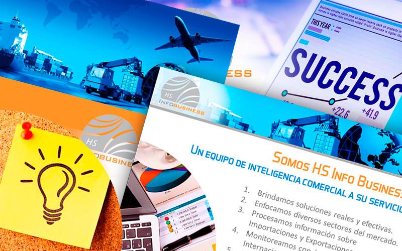 Presentación PPT Hs Infobusiness Consultores 2