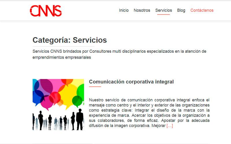 Desarrollo de Sitio Web CNNS - Overflow.pe