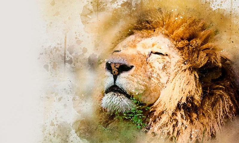 Recupera tu energía sin perder de vista tus metas - Overflow.pe