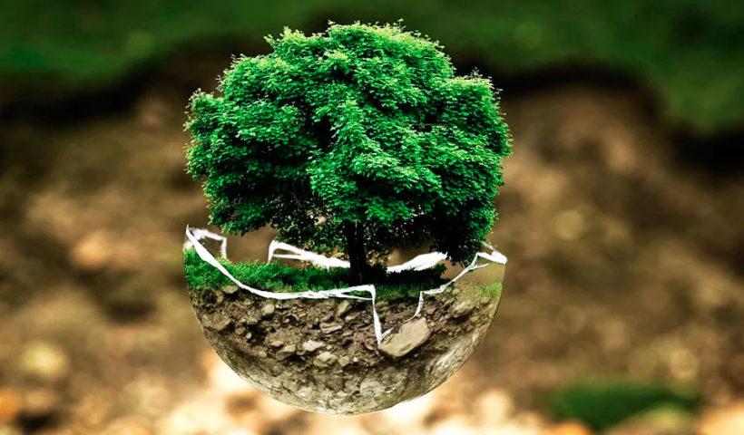 Emprender con sostenibilidad ambiental en los negocios - Overflow.pe