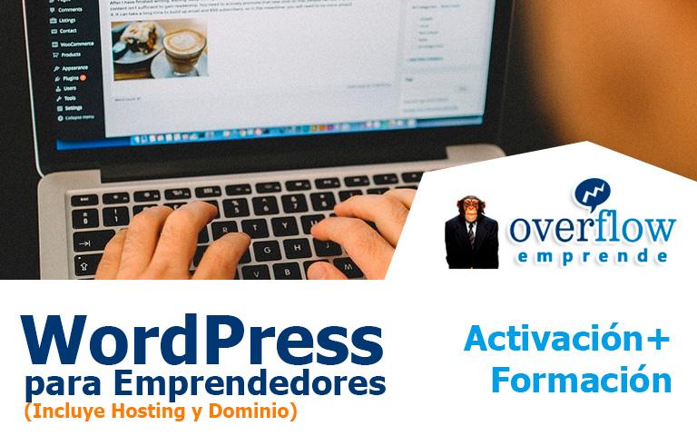 Wordpress para Emprendedores - Curso Especializado Individual