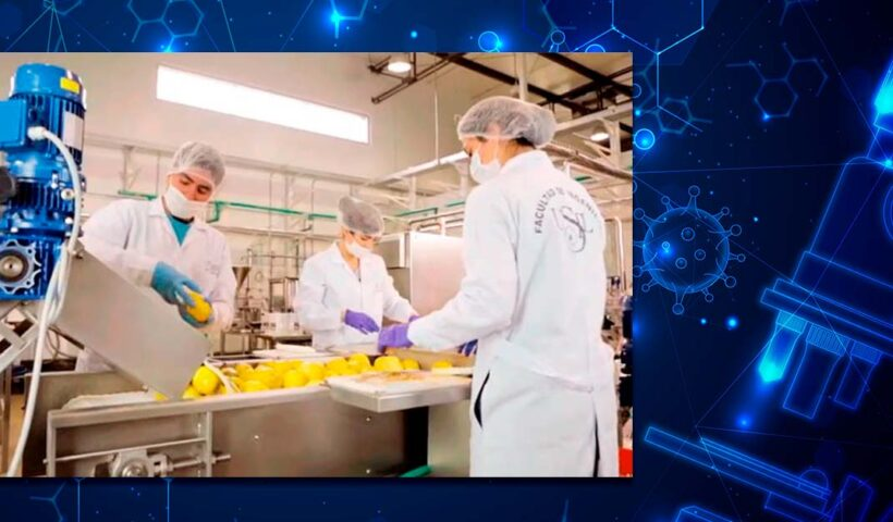 7 regiones impactadas en ciencia y tecnología por USIL