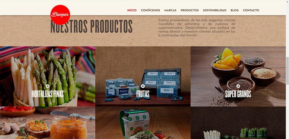 Sitio Web Corporación Danper